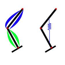 leg stiffness