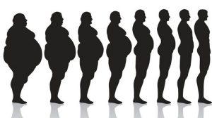 Quand une personne perd du poids, où va le gras?