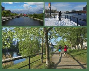 Parcours préférés des coureurs Montréalais